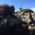 6. Tag – Wild Pacific Trail und Ucluelet City
