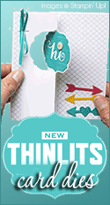 New Thinlits Card Dies by Stampin Up