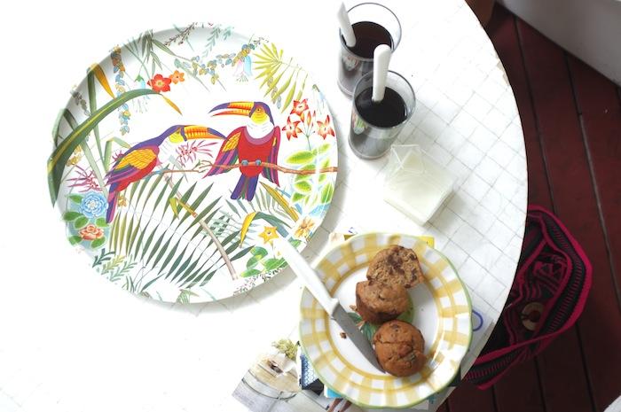 parrot breakfast