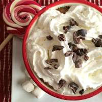 Skinny Peppermint Mocha {Low Cal}