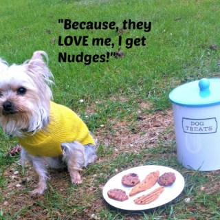 Unconditional Love with Nudges® Wholesome Dog Treats