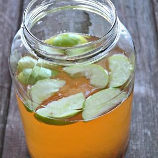 Apple Cinnamon Metabolism Detox Water