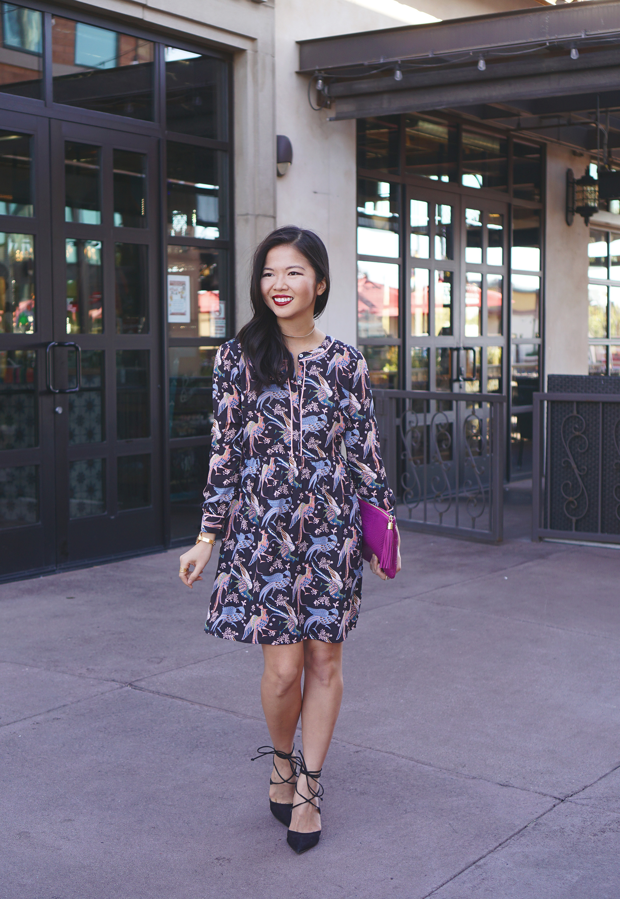 Skirt The Rules / Bird Print Dress