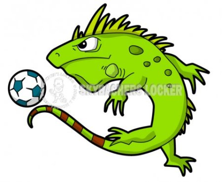 Iguana Soccer Mascot - Skybacher's Locker