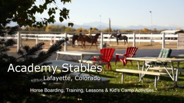 Academy Stables
