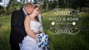 Molly and Adam Wedding Highlights
