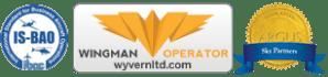wyvern-wingman2