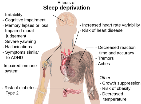 How sleep deprivation affects the body