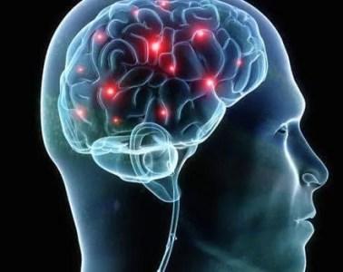 Synapse_in_brain_
