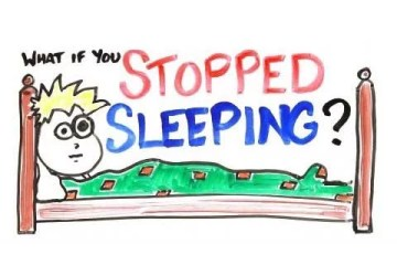 What would happen if you stopped sleeping?
