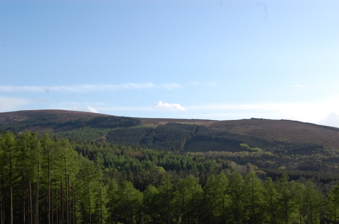 Slieve Bloom Mountains