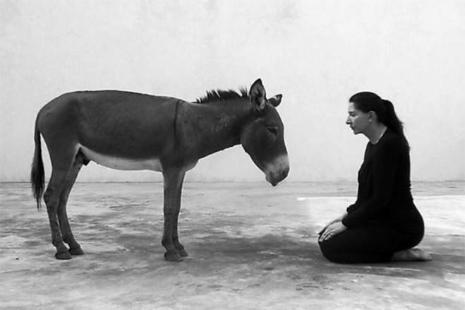Sat vremena gleda u magarca, a Srbija joj za to platila 80.000 evra