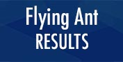 Flying Ant Results
