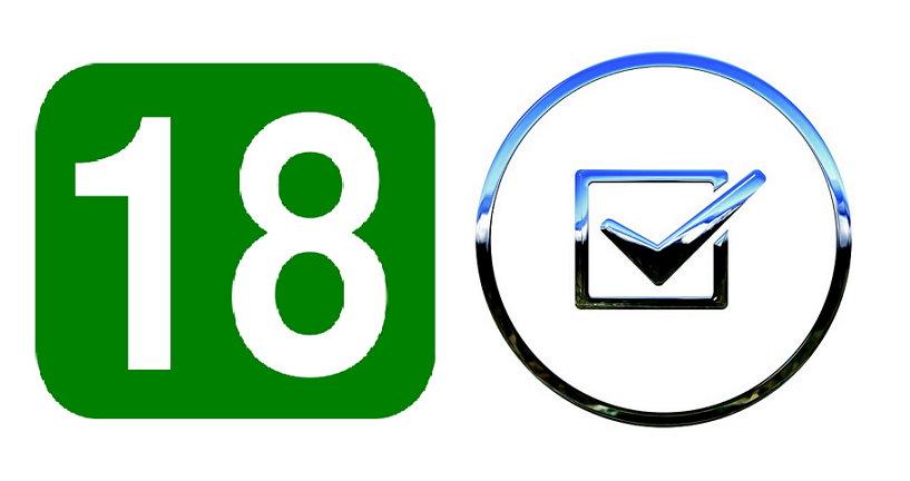 18 투표권 선거권