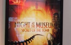 night-museum-3