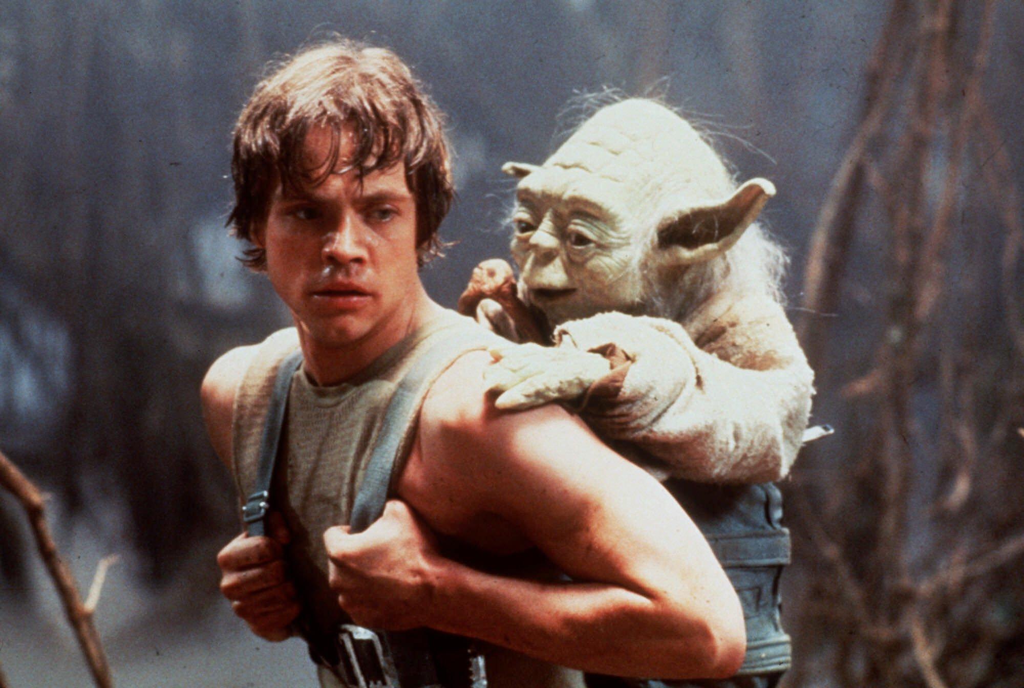 Le Maître Yoda entraîne Luke pour la fin de son apprentissage.