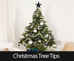 4 Safety Tips For Your Christmas Tree