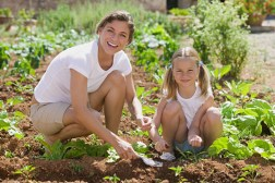 Vegetable Garden 101: Get the Kids Started on a Veggie Patch Project Today