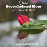 Do you need a mommy time out? Learn why your need to rest, learn how you can rest and what you can do that will help you rest.