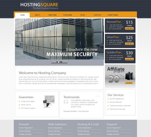 wordpress web hosting theme 06 12 Best Wordpress Web Hosting Themes