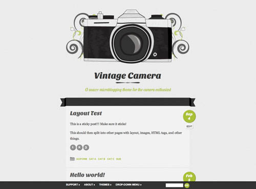 tumblr style wordpress themes 05 18 Free Awesome Tumblr Style Wordpress Themes