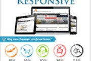 why-wordpress-responsive-infographics