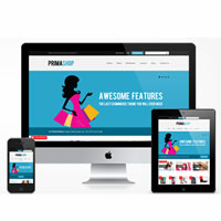 flat-ecommerce-wordpress-theme