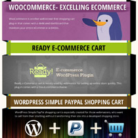 wordpress-ecommerce-small