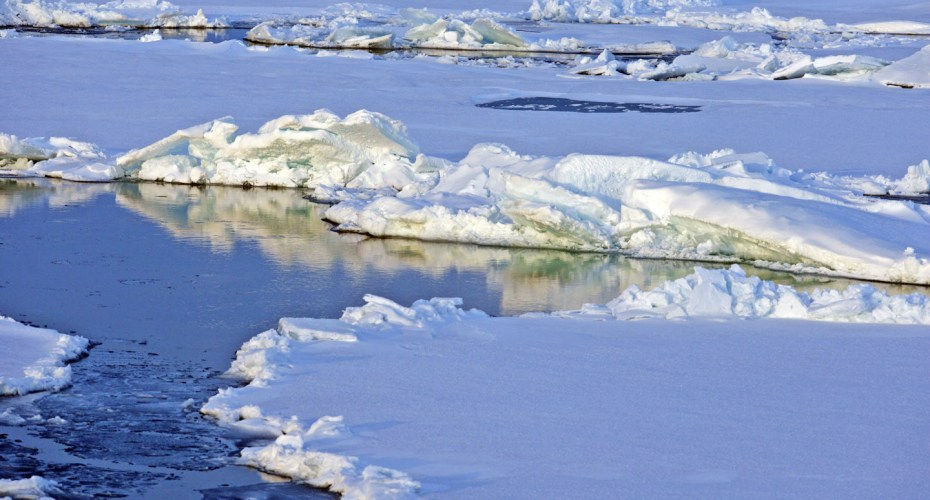 Editorial: It's Time to Fight Climate Change