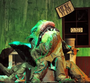 Gallery: Little Shop of Horrors