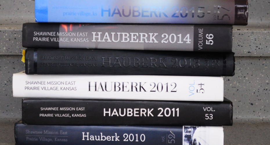 Eastipedia: Hauberk
