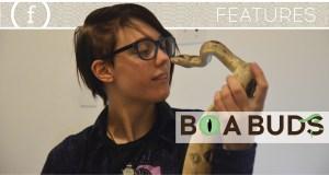 Boa Buds: Jaye Fire & Her Snakes