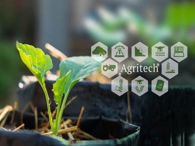 Telugu Agricultural News - Digitalization Of Agriculture Sector