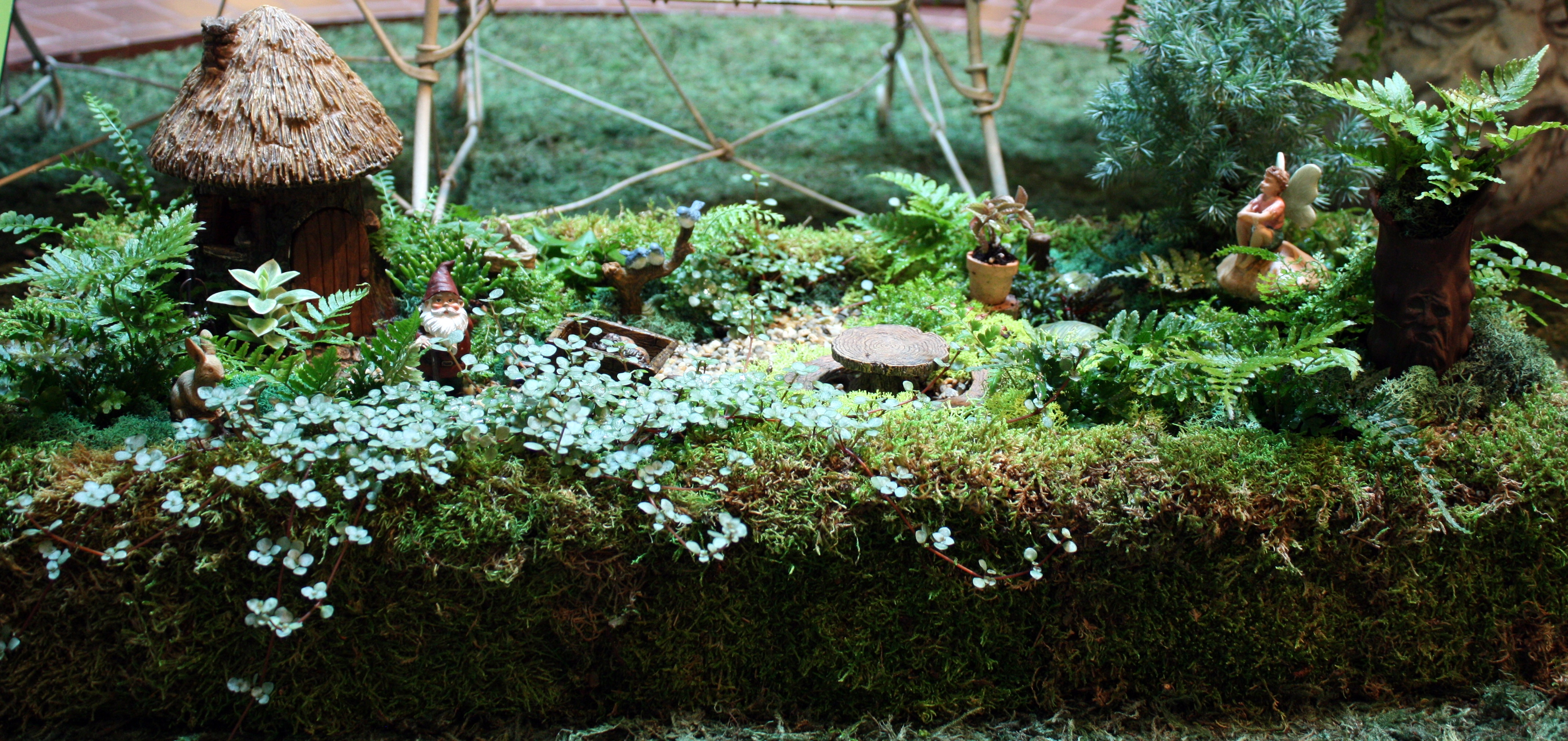 Fullsize Of Containers For Fairy Gardens