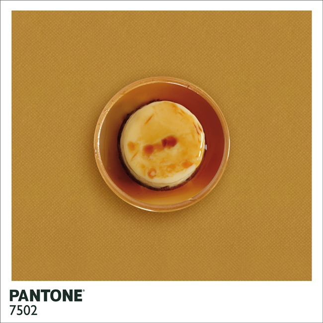 Pantone  (4)