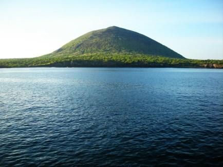 Galapagos (1)