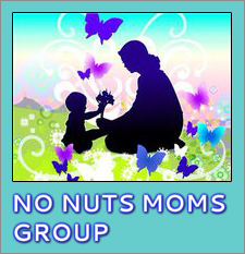 No Nuts Moms Group