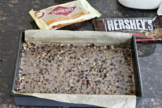 Dark Chocolate Hazelnut Pie Bars Recipe | SnappyGourmet.com