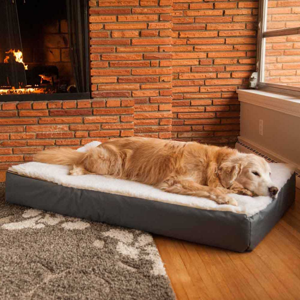 Assorted Cream Cover Super Orthopedic Lounge Dog Bed Cream Sherpa Snoozer Heated Dog Beds Amazon Dog Beds Amazon Uk Rectangle Super Orthopedic Dog Bed bark post Dog Beds Amazon