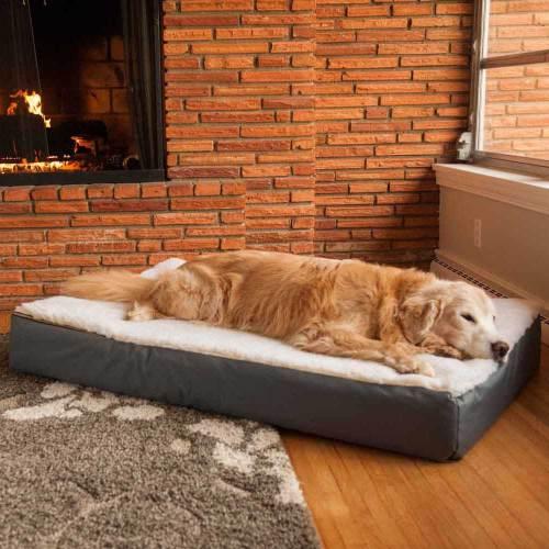 Medium Crop Of Dog Beds Amazon