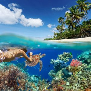 The 57 Best Snorkeling Spots in the World