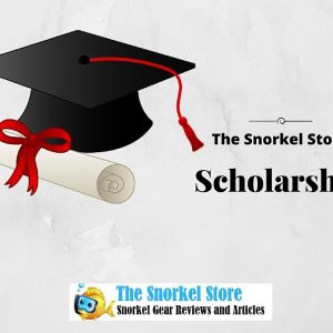 Announcing the Snorkel Store Scholarship