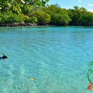 6 of the Best Snorkeling Spots in Puerto Rico