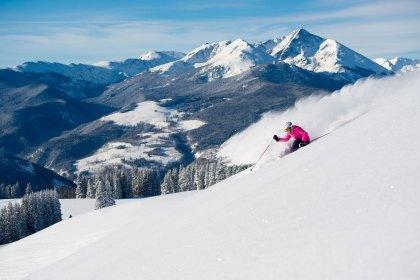 Snow Motion Ski Tip - Hips to Tip