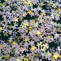 Life is a Puzzle