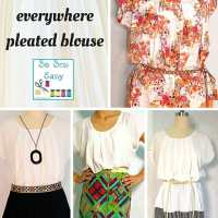 Eve: the any day, everywhere pleated blouse