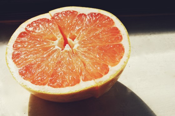 grapefruit photography