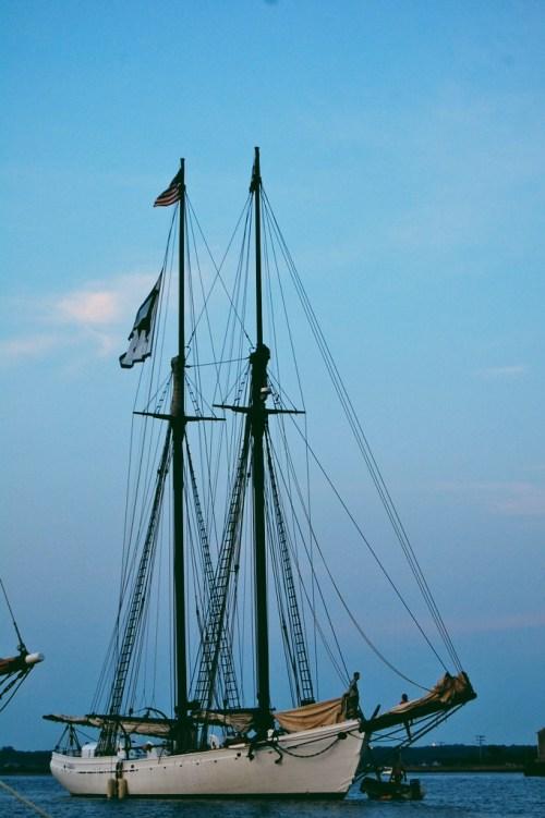 the black dog tall ships