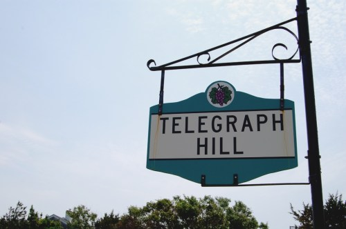 telegraph hill martha's vineyard