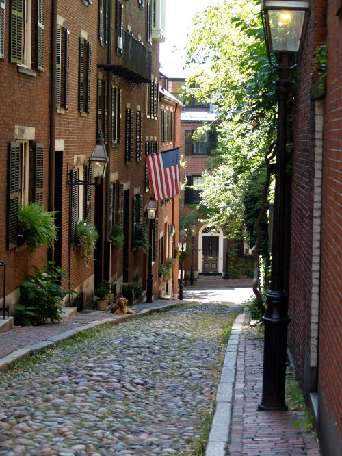 Acorn Street Beacon Hill